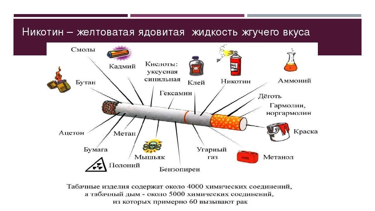 Польза курения для здоровья или какие есть плюсы и минусы привычки для организма человека