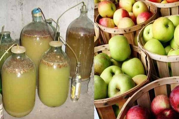 Вино из яблок - очень вкусный и ароматный домашний алкоголь