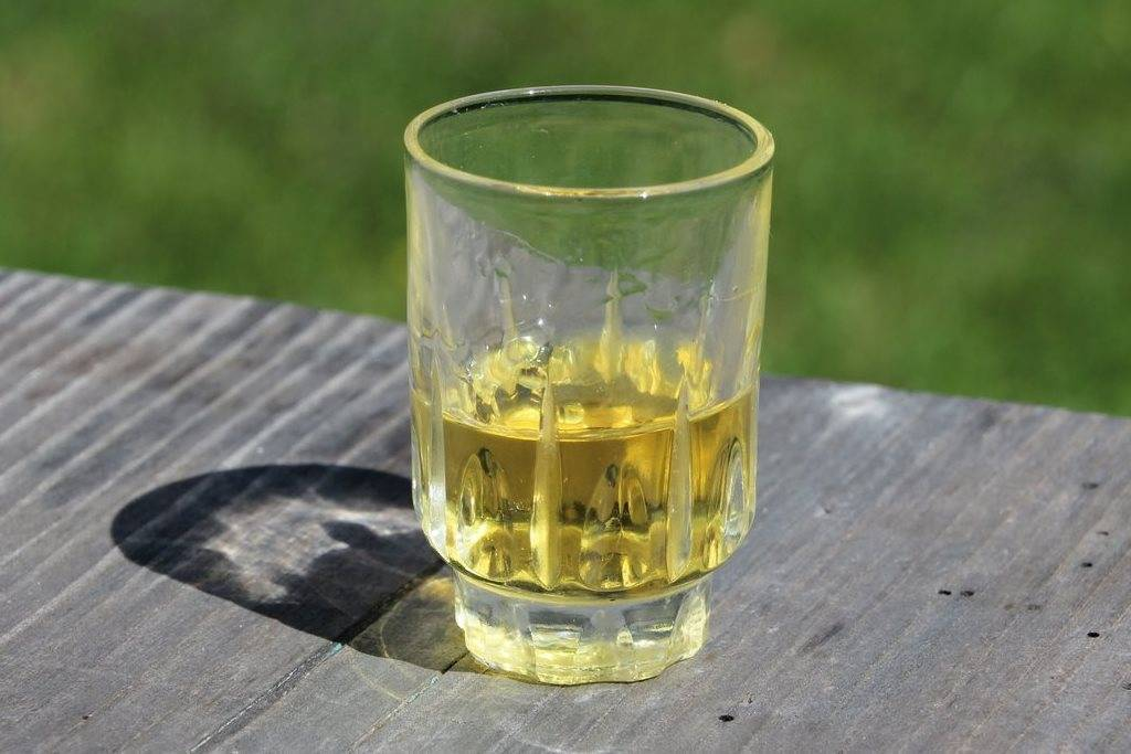 Алкогольные коктейли с апельсиновым соком – топ 10 рецептов