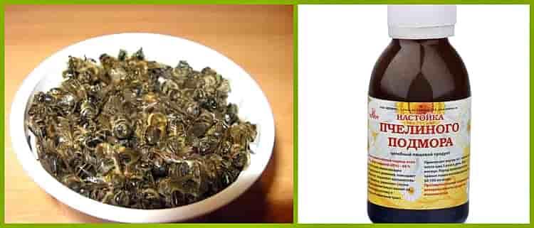 Пчелиный подмор: от чего помогает, польза и вред, применение в народной медицине и косметологии