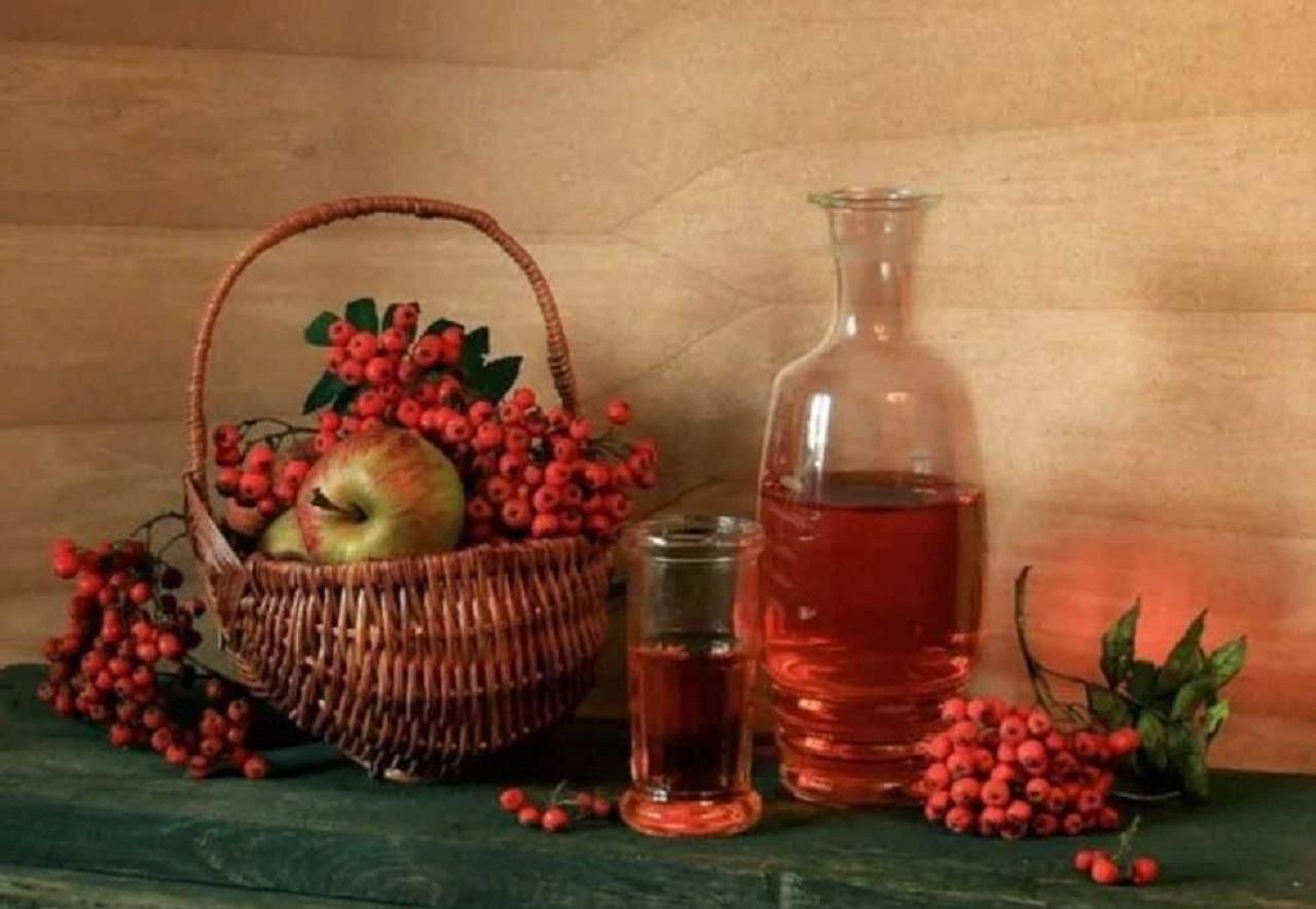 Рецепты вина из яблок и черноплодки. рецепты приготовления вина из красной рябины в домашних условиях