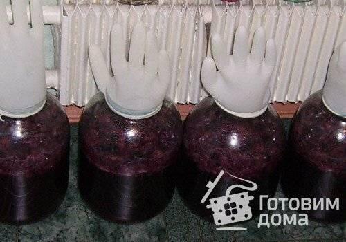 Что можно приготовить из винограда изабелла кроме вина в домашних условиях