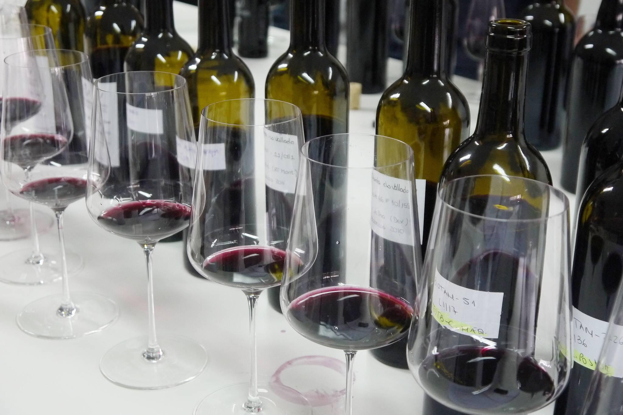 Вина португалии - классификация, регионы, где купить - сухое и зеленое вино