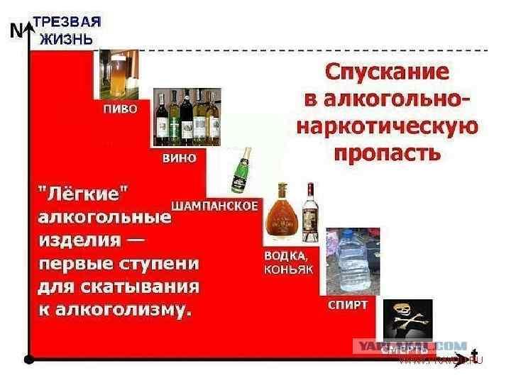 Воздействие алкоголя на течение остеохондроза