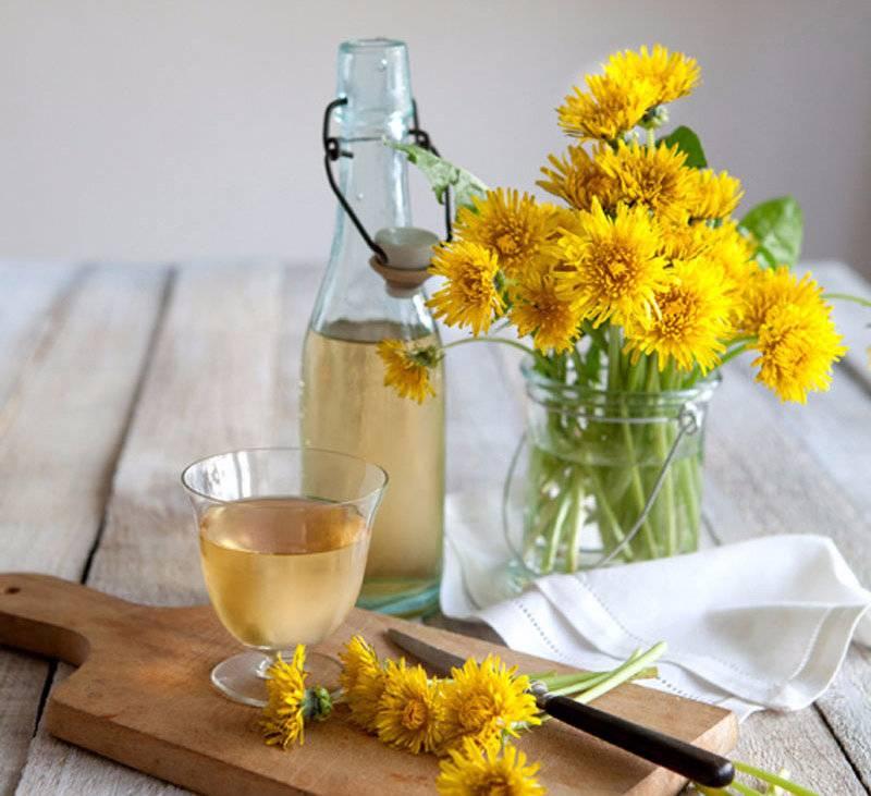Вино из одуванчиков: интересные рецепты