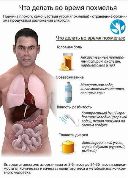 Понос после пива: почему возникает диарея на следующий день, как лечить патологию