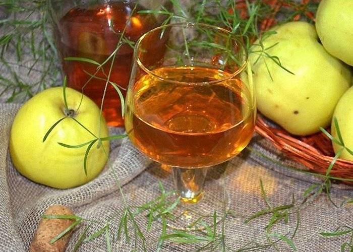 Яблочное вино / домашнее вино / tvcook: пошаговые рецепты с фото