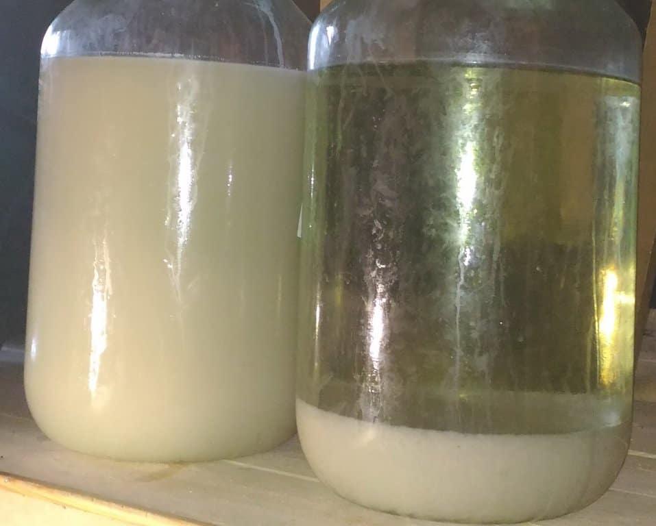 Очищение браги: фильтрация и осветление