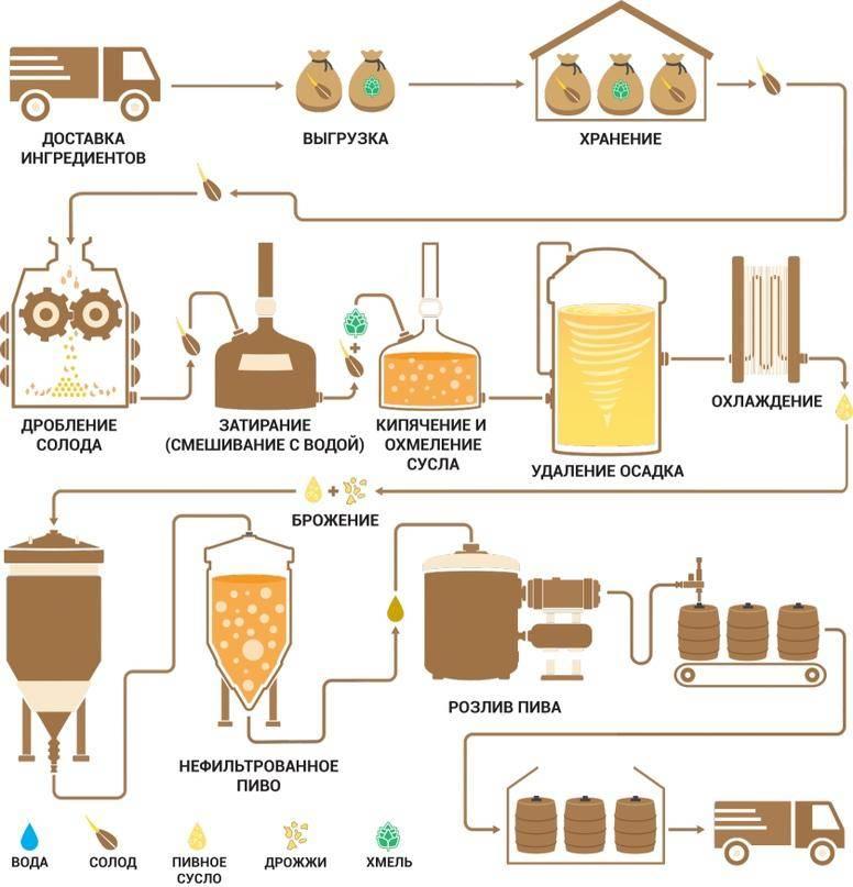Сколько обычно бродит домашнее пиво?