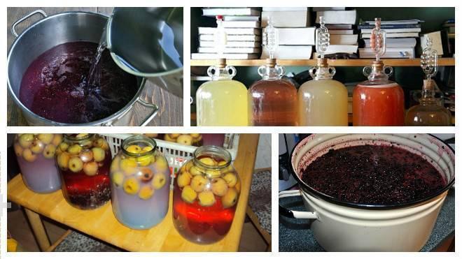 Домашнее вино из компота как приготовить - простые пошаговые рецепты с фотографиями