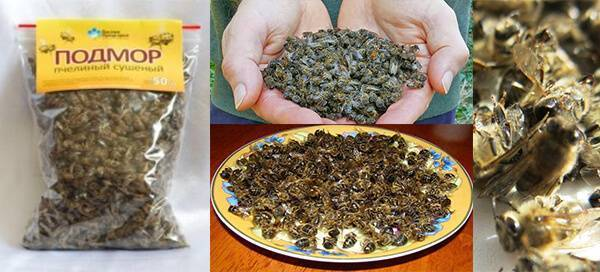 Настойка из пчелиного подмора на водке, при каких заболеваниях пить