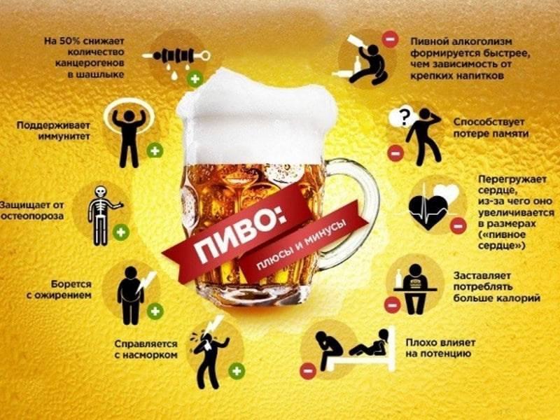 Алкоголь польза и вред: влияние на организм и здоровье человека