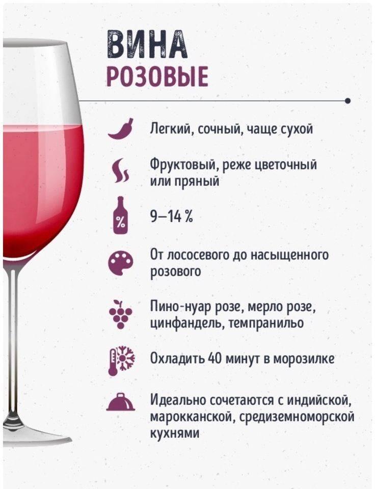 Как правильно пить вино. как пить вино правильно: полезные рекомендации. как пить вино правильно: выбор бокала, температуры, закуски. полезные советы