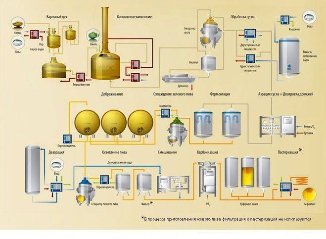Как сварить домашнее пиво из концентрата? подготовка, брожение и выдержка в домашних условиях