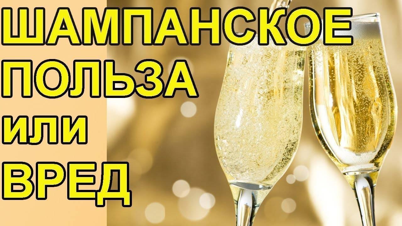 Польза и вред шампанского для человека