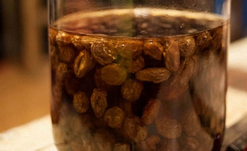 Квас из березового сока в домашних условиях: рецепты долгого хранения