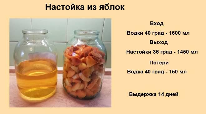 Как приготовить яблочную настойку на водке (на спирту)