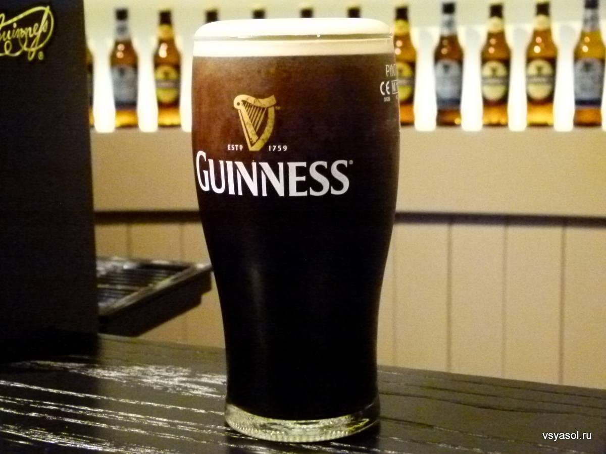 Ирландское пиво гинесс — чем популярна эта марка