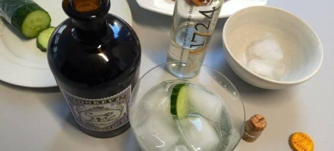 С чем пьют джин и чем разбавляют? – как правильно пить