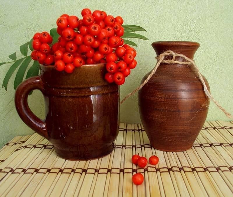 Рябина красная - заготовки на зиму: рецепты приготовления сока, варенья, компота и вина + видео