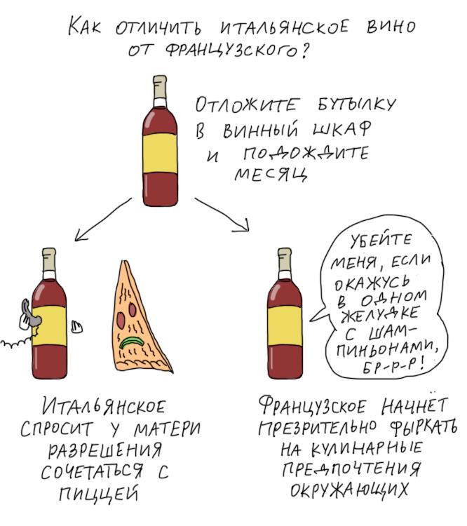 Начинаем разбираться в винах | просто о вине | яндекс дзен