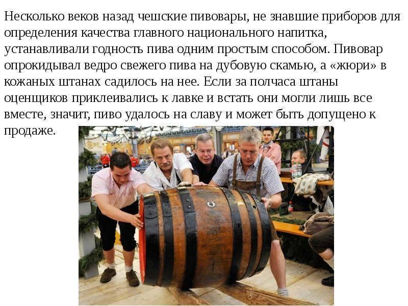 20 интересных фактов о пиве – статьи – арриво
