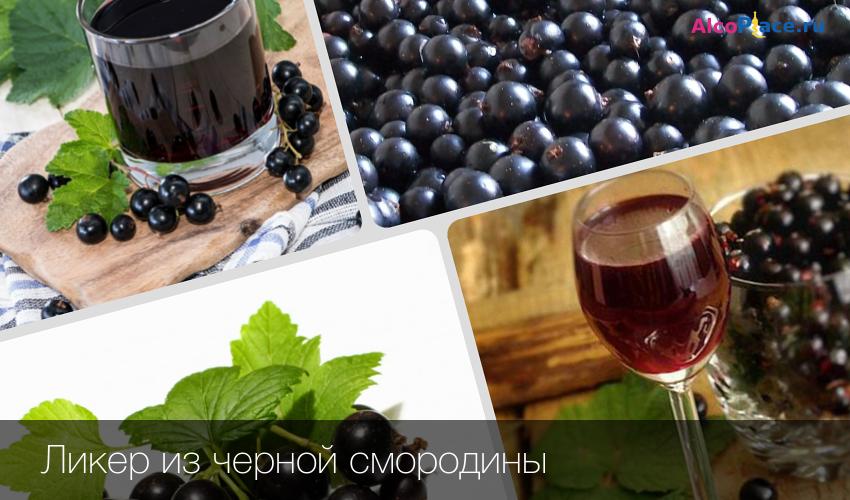 Ликер из смородины: рецепты, как сделать в домашних условиях