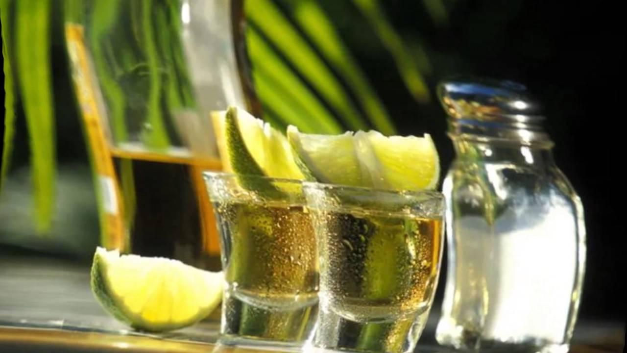 Как правильно пить текилу с солью и лимоном, лаймом, апельсином и корицей: правила. чем правильно закусывать и записать текилу: правила, советы. с чем пьют и чем закусывают текилу мексиканцы и россияне?