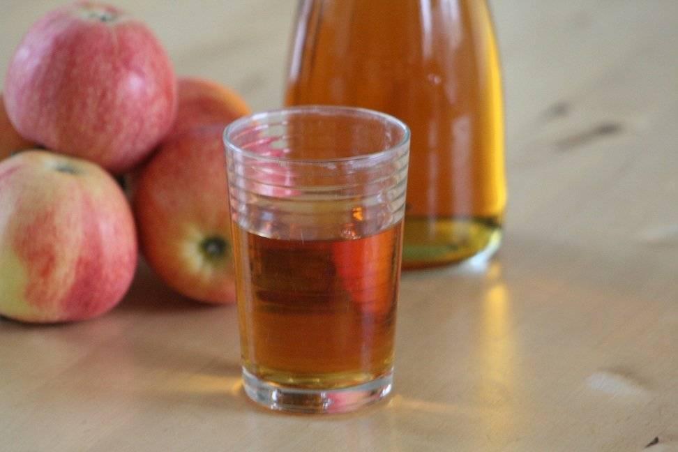 Самогон из яблок рецепт яблочного самогона