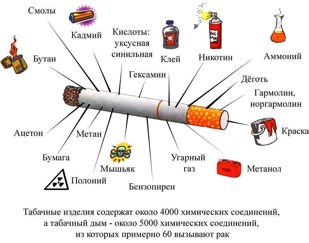 5 марок лучших сигарет до 150 рублей, в которые до сих пор набивают настоящий табак | табачная культура | яндекс дзен
