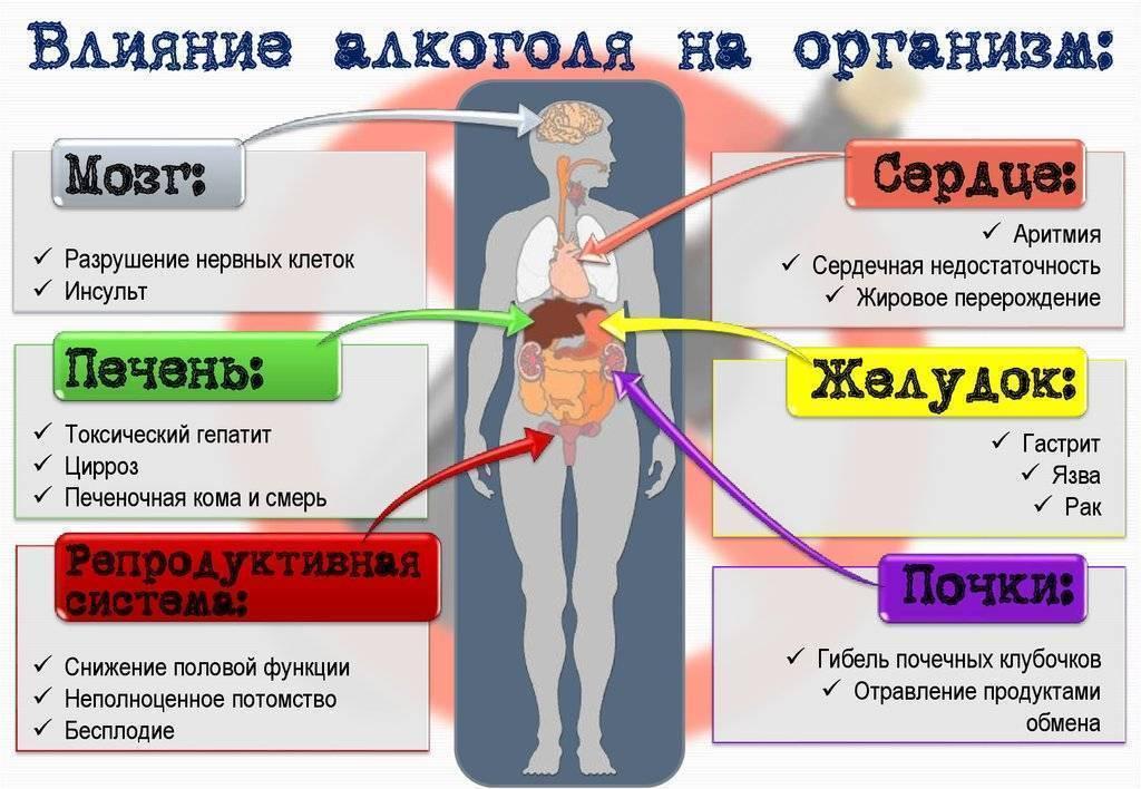Алкоголь убивает клетки головного мозга