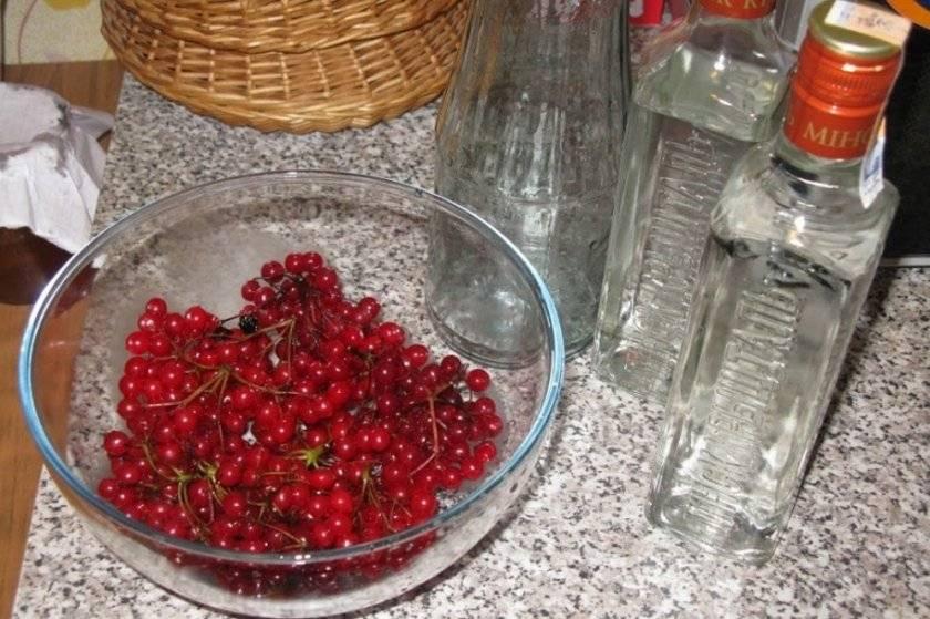 Настойка калины на водке, самогоне или коньяке, рецепты | выпейменя.рф