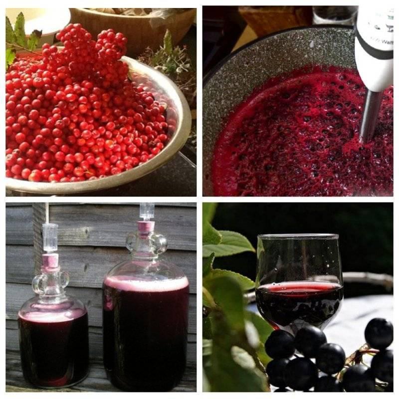 Простой ррецепт: приготовление вина из калины в домашних условиях.