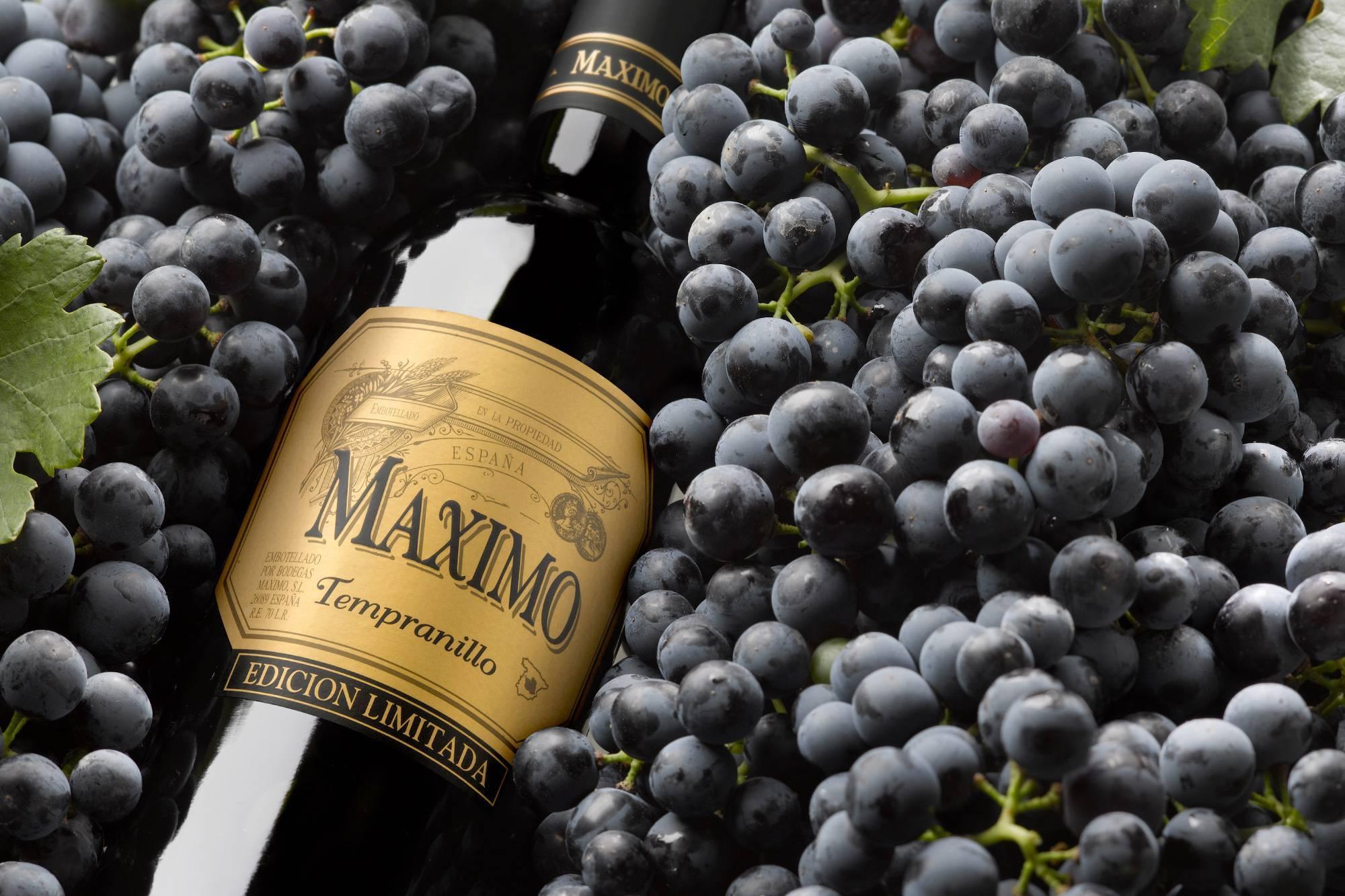 Сорт винограда и вина Темпранильо