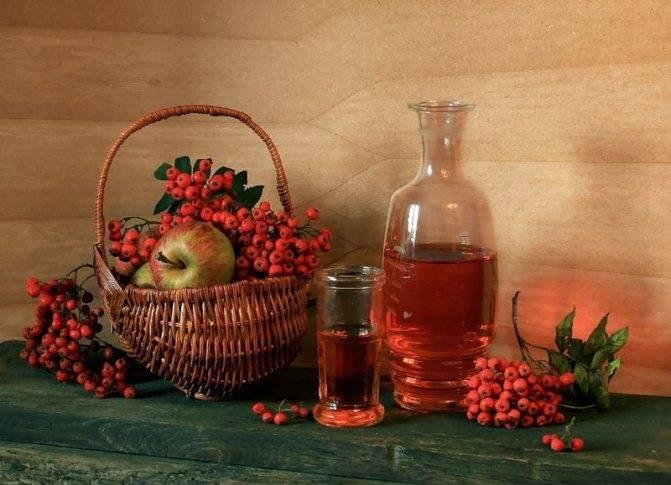 Вино из ягод калины: как сделать в домашних условиях
