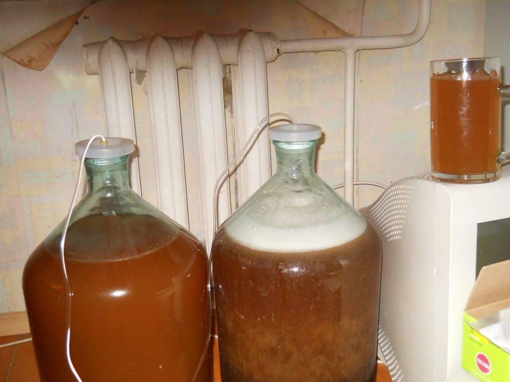 Как приготовить брагу для питья в домашних условиях - головная боль