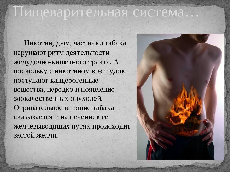 Как курение влияет на пищеварительную систему: негативное влияние никотина на органы пищеварения, вызывают ли вейп, кальян и алкоголь проблемы с жкт | elesto.ru