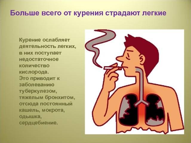 Курение при бронхите: последствия для курильщика
