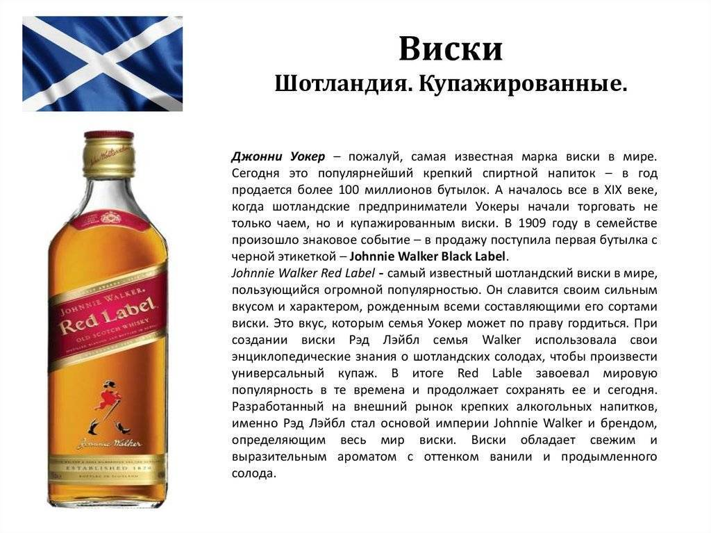 Какой ром лучше выбрать — топ-10 марок - alcdrink.ru