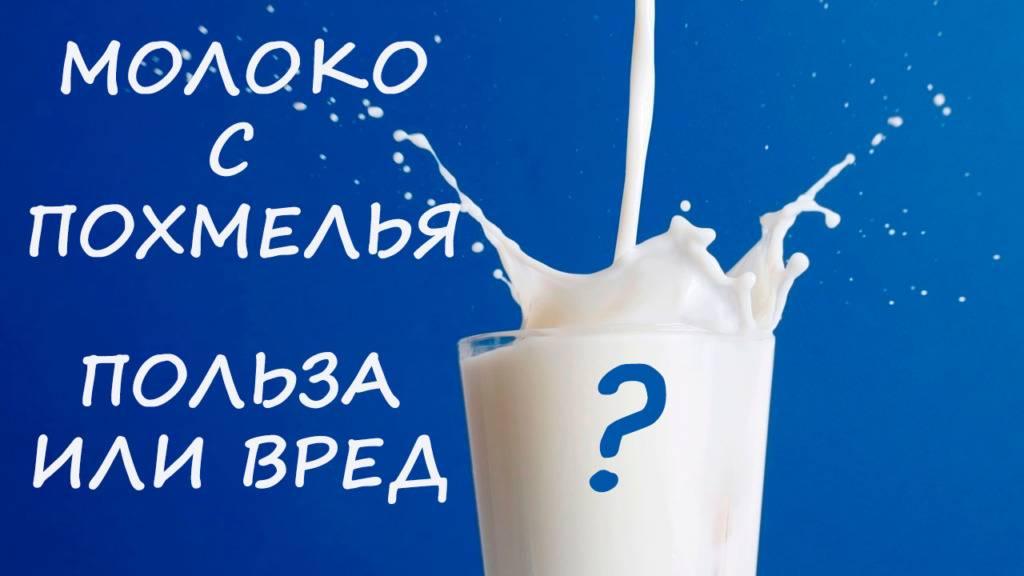 Молоко с похмелья — особенности употребления, рецепты и отзывы : labuda.blog молоко с похмелья — особенности употребления, рецепты и отзывы — «лабуда» информационно-развлекательный интернет журнал