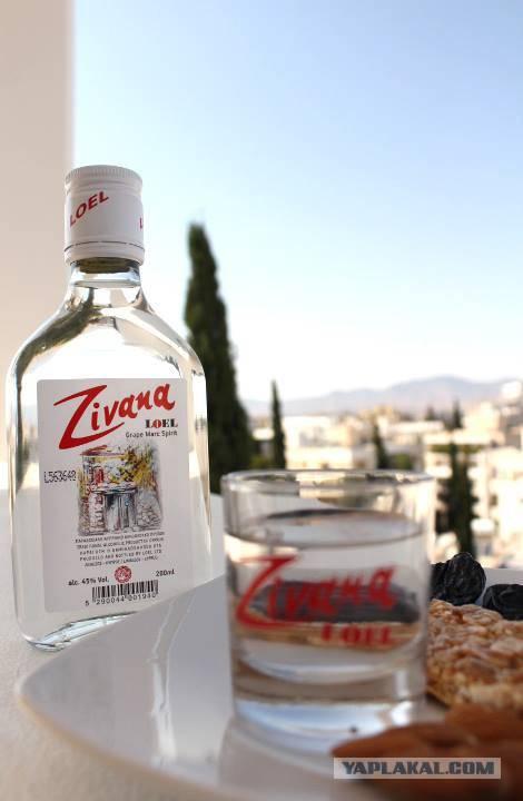 Зивания кипрская водка: из чего делают, известные марки и виды + как и с чем пить