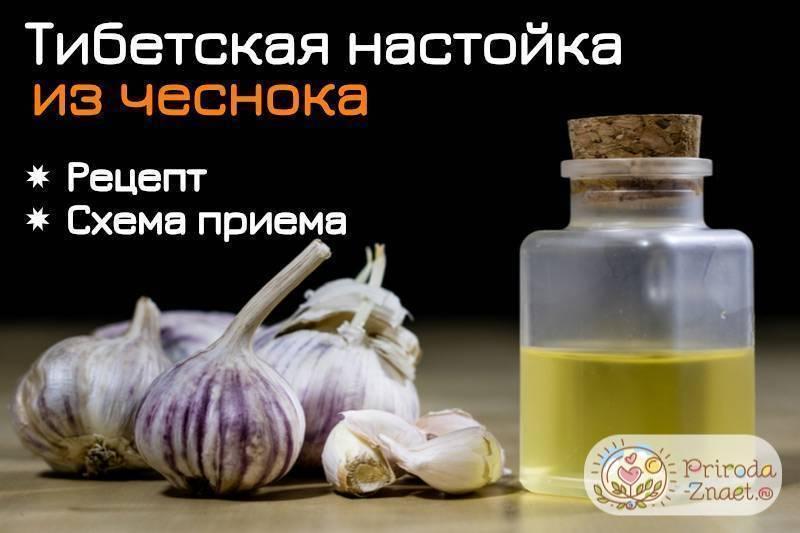 Чистка сосудов чесноком и лимоном: отзывы врачей о процедуре