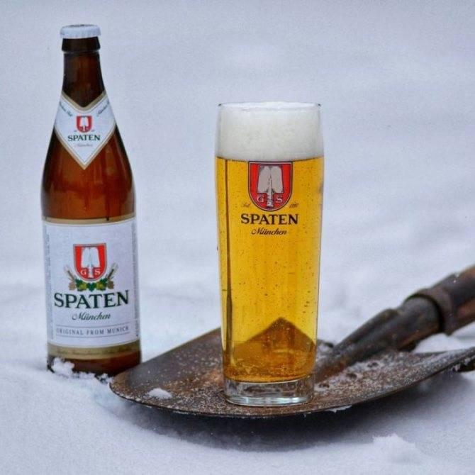 Пиво василеостровское (vasileostrovskoe) — особенности продукции, история возникновения