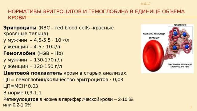 Красное вино и гемоглобин