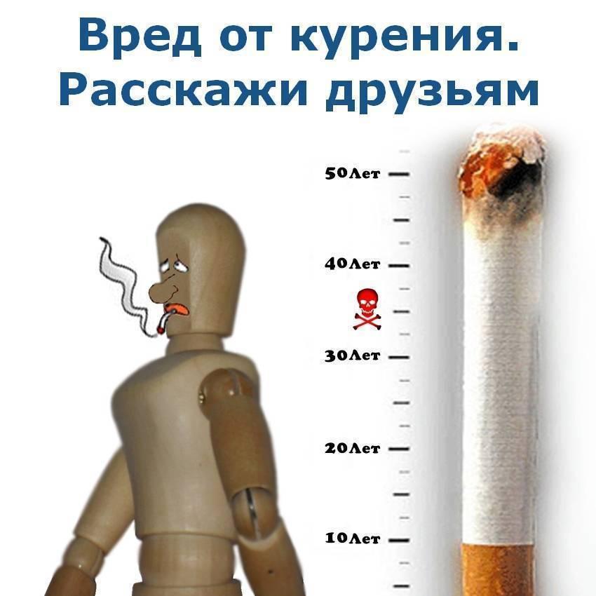 Алкоголь или сигареты: что вреднее для здоровья и к чему приводит злоупотребление