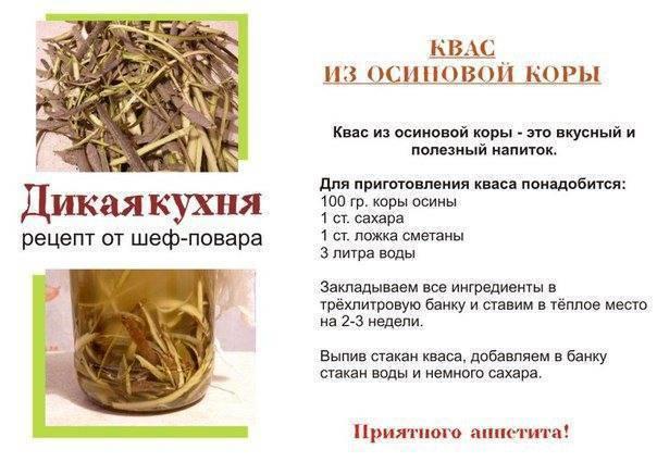 Настойка коры осины на водке: назначение и рецепты приготовления - все о болезнях