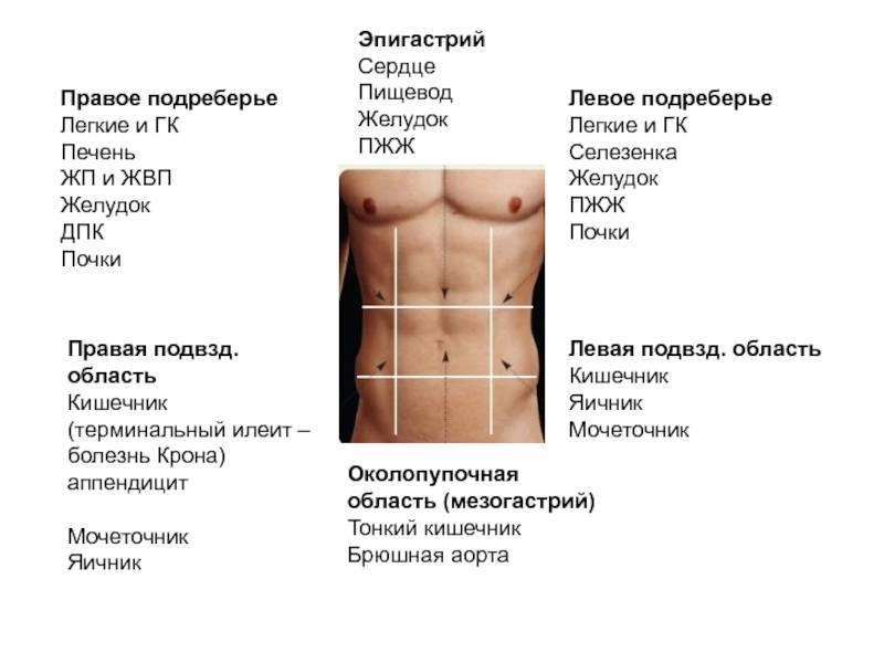 Боль в правом боку: причины, лечение, профилактика