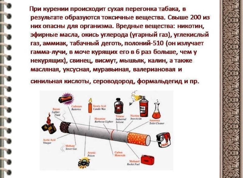 Вред курения: самые важные факты
