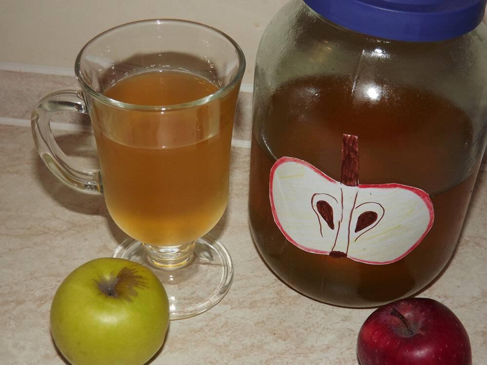 Целебная настойка из яблок. домашняя настойка из яблок на водке (самогоне или спирту)