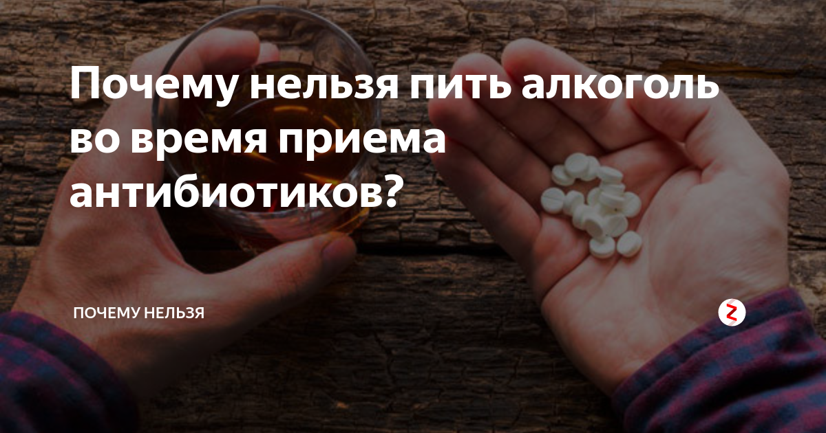 Почему нельзя сочетать алкоголь и антибиотики
